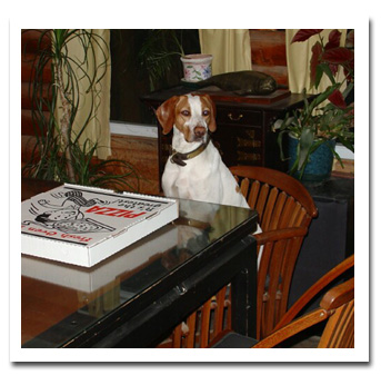 Pointer at table - with pizza box
